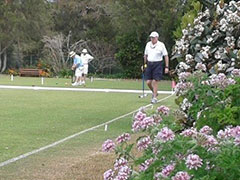 Croquet : a hit for health